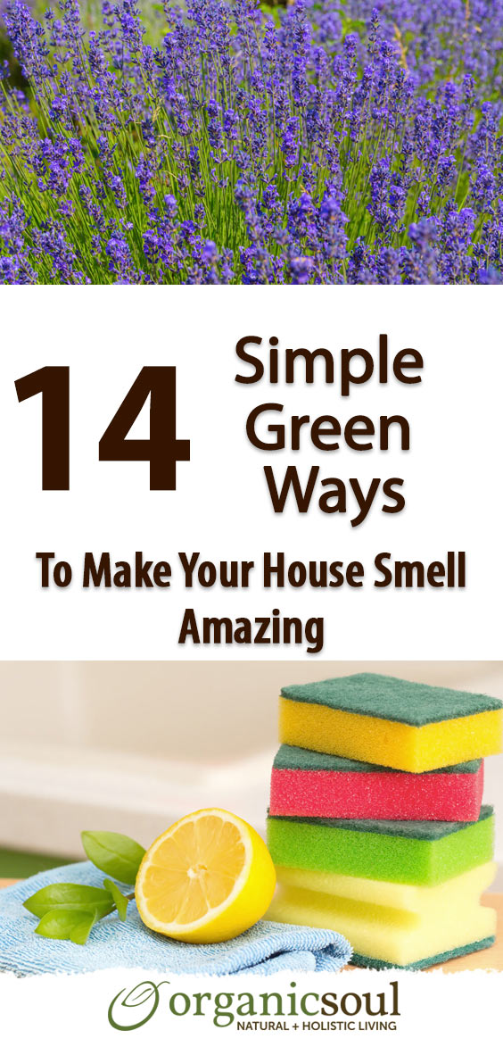 14-simple-green-ways-to-make-your-house-smell-amazing-pin