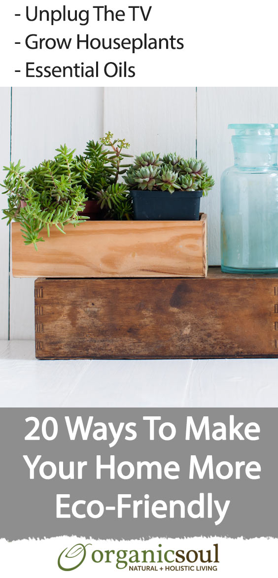 20-cost-effective-ways-to-make-your-home-more-eco-friendly-pin