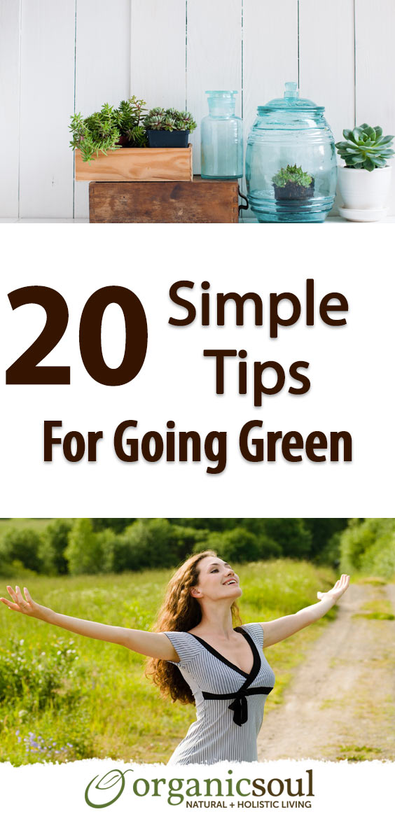 20-simple-tips-for-going-green-pin