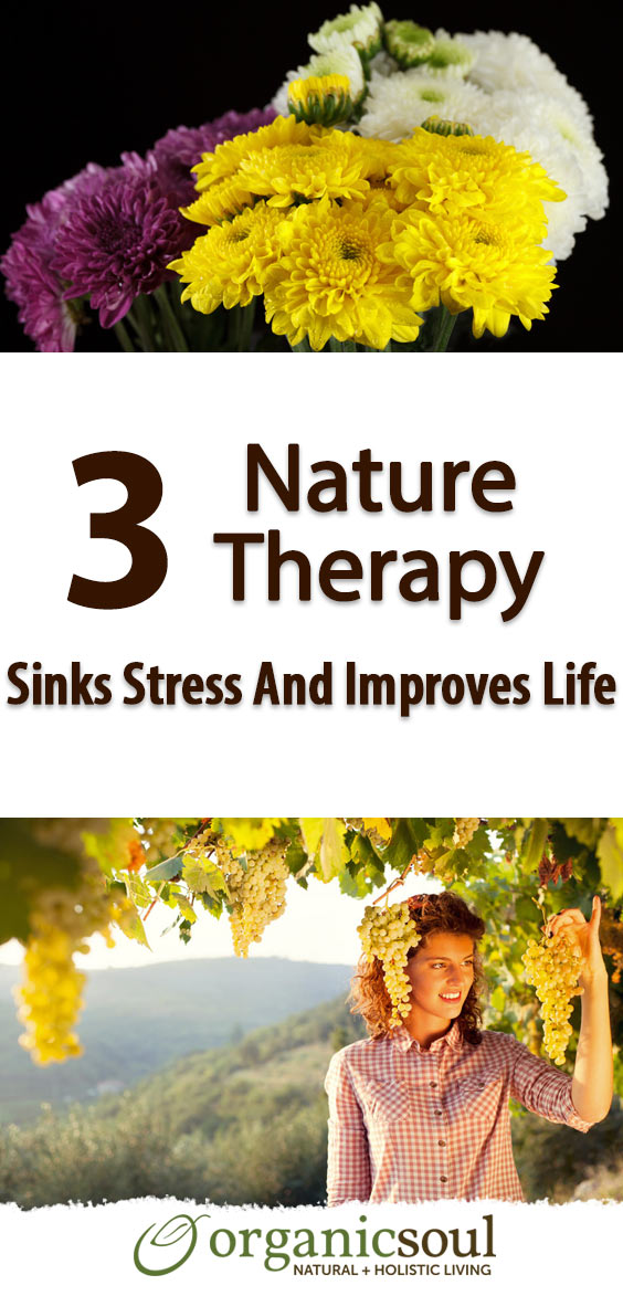 3-proven-ways-nature-therapy-sinks-stress-and-improves-life-pin
